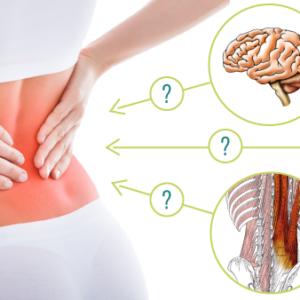 慢性腰痛の治療