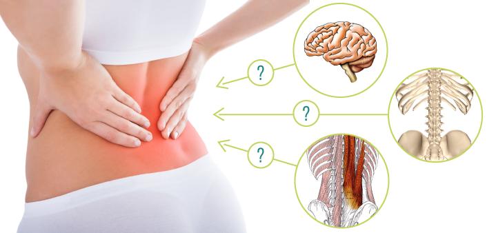 腰痛の原因を見極める